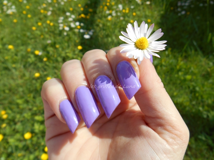 KIKO 331 violet clair 4