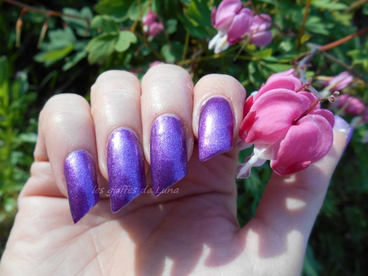 Salomé F186-431 violet 2