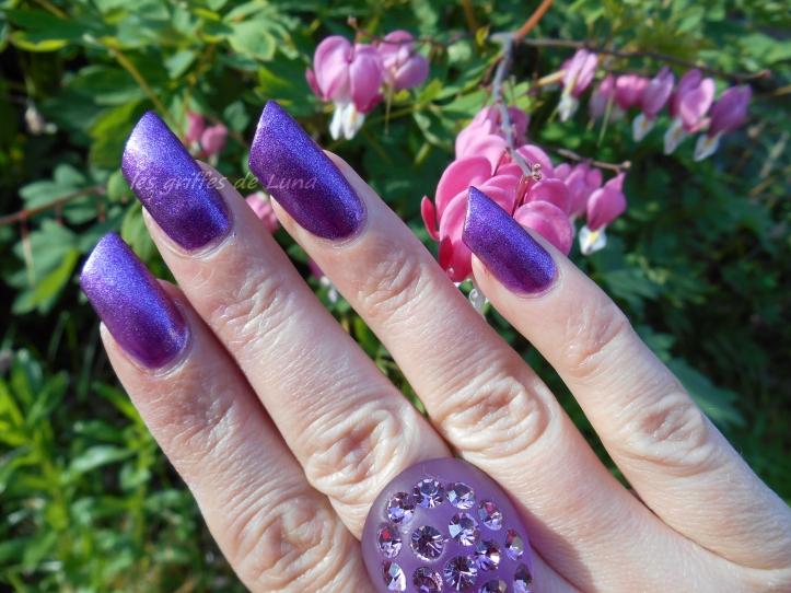 Salomé F186-431 violet 3