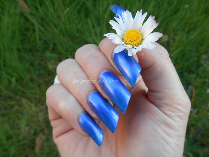 Miss europe 93 Bleu indigo 3
