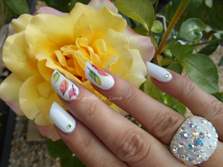 Nail art Plumes colorées 2