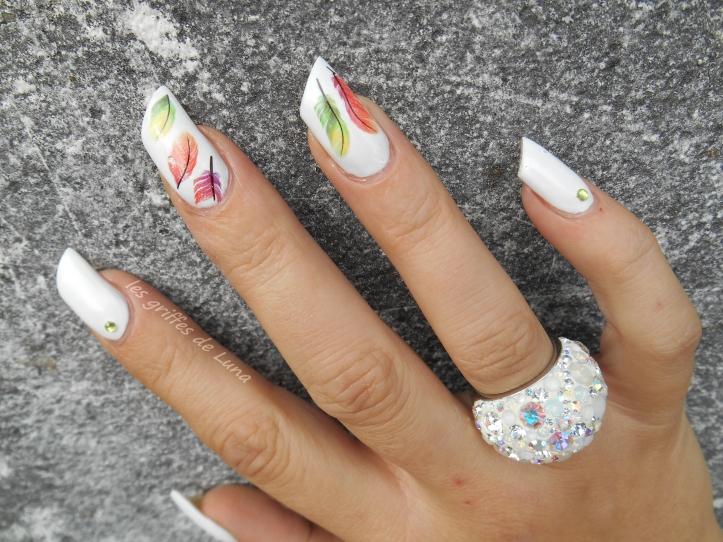 Nail art Plumes colorées 3