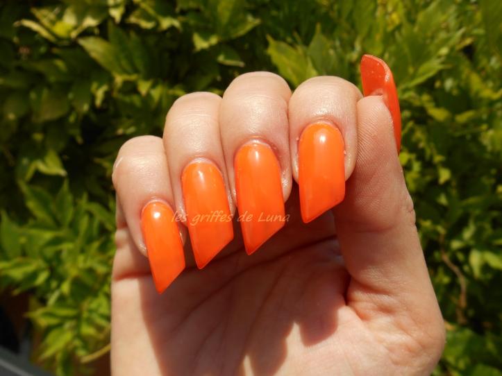 SMINK Pumpkin street orange 2