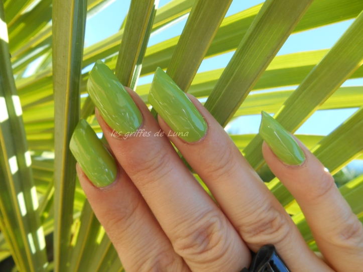 BARRY M - Gelly - Key lime 4