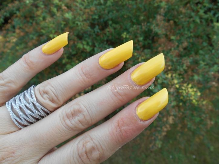 HEMA 811 jaune 1