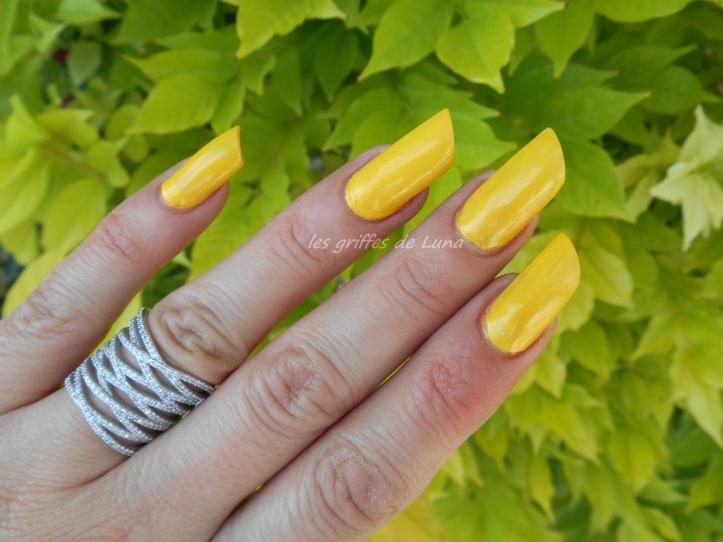 HEMA 811 jaune 4