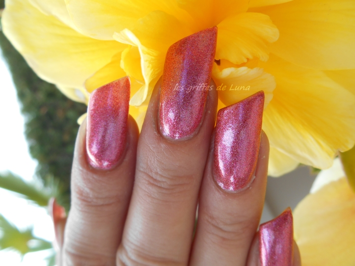 COLOUR ALIKE 550 duochrome rose holo 4
