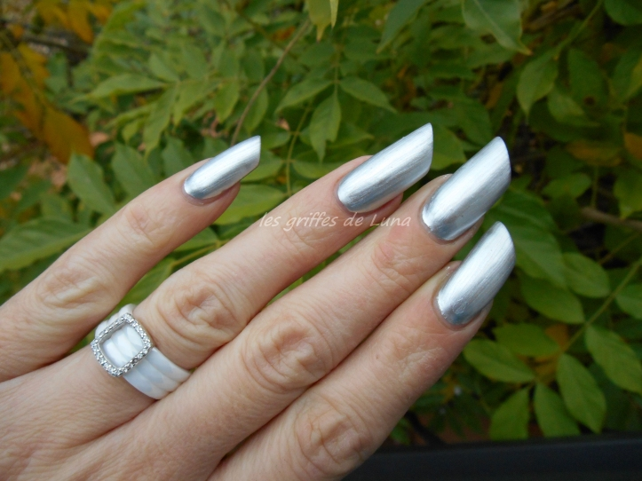 BARRY M 319 Foil effects argent 2