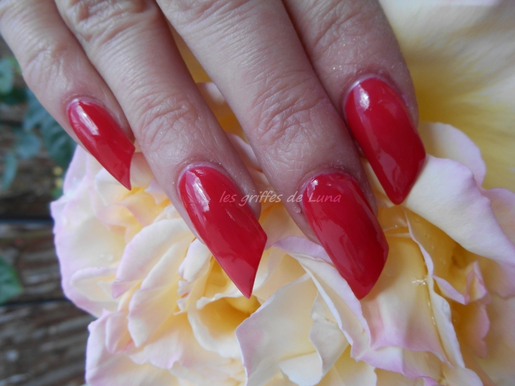 SALOME F183 341 rouge 1
