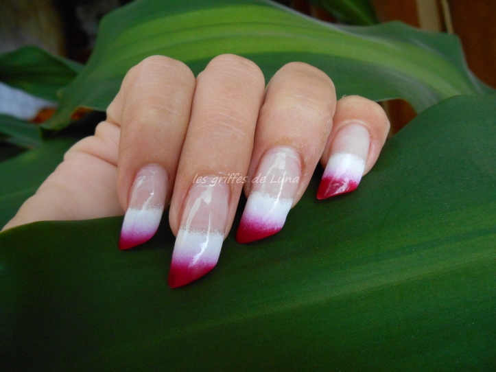 nail-art-french-degrade-bicolore-2