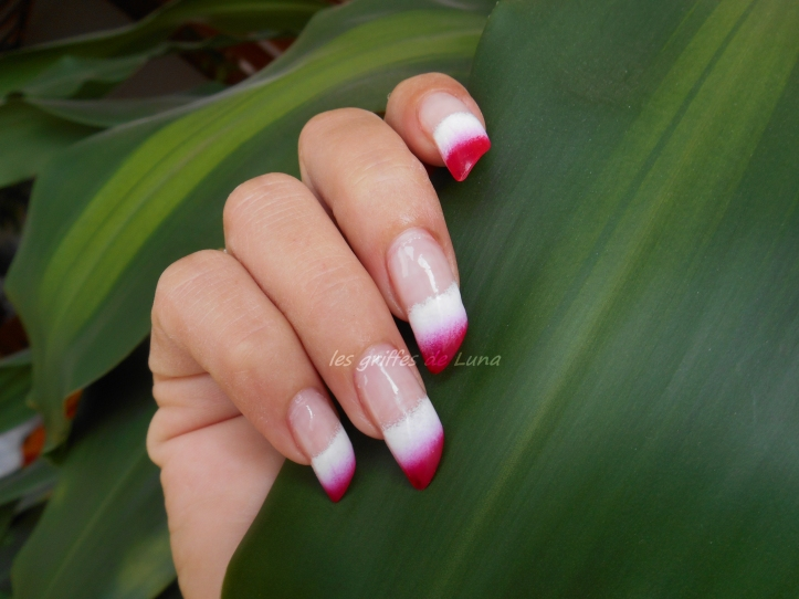 nail-art-french-degrade-bicolore-3